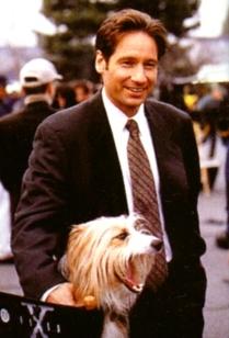 David und sein Hund am XF-Set